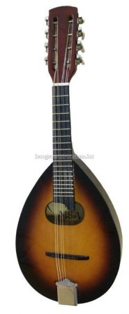 MSA MA3 mandolin, ajándék szivacsos tok